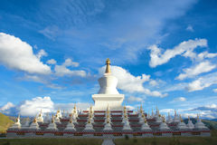 Stupa Forest Stock Image