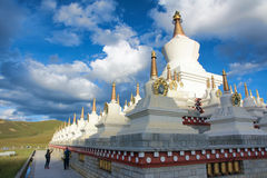 Stupa Forest Royalty Free Stock Photos