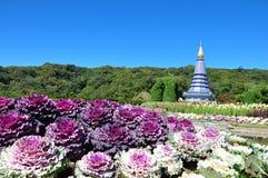 The Stupa Phra Mahathat Naphamethanidon Stock Photography