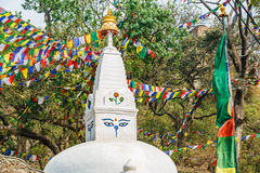 Stupa and prayer flags Royalty Free Stock Image