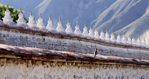 Stupa wall and hickwall Royalty Free Stock Images