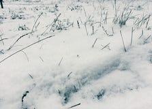 Stupad snö på gräset Arkivfoto