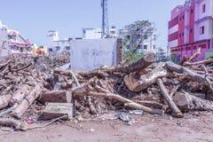 Stupad trädfilial klippt ner in i stycken Arkivfoto