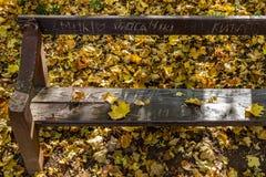 Stupade gulingsidor på bänken Royaltyfria Foton
