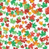 Stupade lönnlöv för ram höstbakgrundscloseupen colors orange red för murgrönaleaf också vektor för coreldrawillustration Royaltyfria Bilder