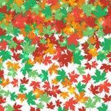 Stupade lönnlöv för ram höstbakgrundscloseupen colors orange red för murgrönaleaf också vektor för coreldrawillustration Arkivbild