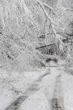 Stupade träd på vägen i vintersnöstorm arkivbild