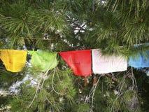Stupahandkerchief pañuelos DE estupa buda Royalty-vrije Stock Foto