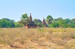 Stupas в лесе Стоковые Фото