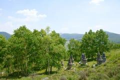 Stupas Stock Photos