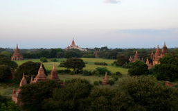 Stupas in Oude Bagan Stock Fotografie