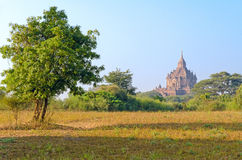 Stupas and pagodas of Bagan ancient. Myanmar Royalty Free Stock Photography
