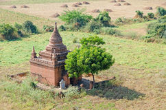 Stupas and pagodas of Bagan ancient. Myanmar Stock Photography