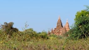 Stupas y pagodas de Bagan antiguos Foto de archivo libre de regalías