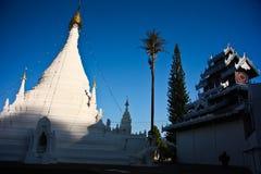 stupawhite Arkivfoto