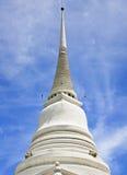 stupawhite Arkivbild
