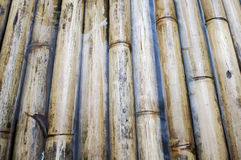 Sturdy bamboo wood, a raft made of , background Stock Photo