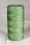 Sturdy natural green thread Royalty Free Stock Photography