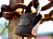 Sturdy padlock. Closeup of closed gates with a rusty padlock and thick chains at a construction site Royalty Free Stock Photos