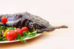 Sturgeon baked with vegetables, selective focus Royalty Free Stock Photos