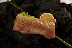 Sturgeon fillet Royalty Free Stock Images