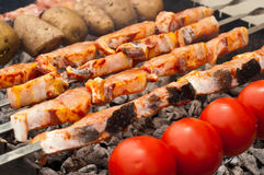 Sturgeon fillets on a skewer. Stock Images