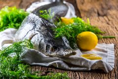 Sturgeon fish with dill and lemon on rustic oak table Royalty Free Stock Photo