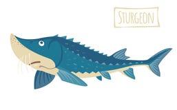 Sturgeon, vector cartoon illustration Stock Images