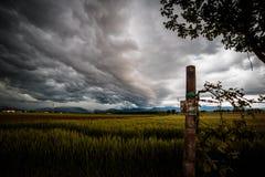 Sturm über den Feldern Stockfotos