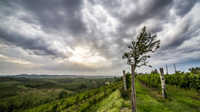 Sturm über den Feldern Lizenzfreie Stockfotografie
