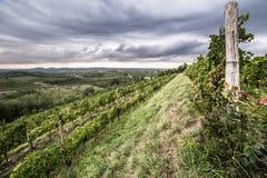 Sturm über den Feldern Lizenzfreies Stockbild