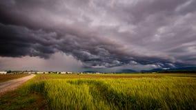 Sturm über den Feldern Stockbilder