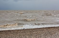 Sturm auf dem Meer von Asow Lizenzfreies Stockbild