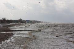 Sturm auf dem Meer von Asow Lizenzfreie Stockbilder
