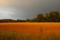 Sturm kommt mit dem Regen Stockfotos