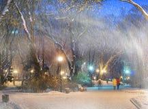 Sturm in Mariinsky-Park Lizenzfreies Stockbild