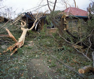 Sturmschaden Lizenzfreie Stockbilder