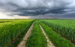 Sturmwolken über Feld und Straße Stockbild