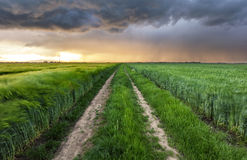 Sturmwolken über Feld und Straße Lizenzfreies Stockfoto