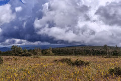 Sturmwolken im Ural Lizenzfreie Stockbilder