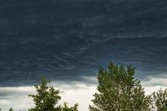 Sturmwolken und die Spitze der Bäume lizenzfreie stockfotografie