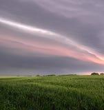 Sturmwolken verdunkeln den Himmel über einem Feld von rhye Lizenzfreie Stockfotografie