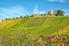 Stuttgart Germany Grabkapelle Vineyards Autumn Fall Season Beaut. Iful Landscape Farming Agriculture Wine stock photo