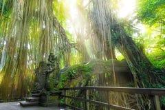 Stutue в священном лесе обезьяны, Ubud, Бали, Индонезии Стоковые Фотографии RF