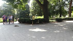 Stuyvesant Square. In downtown Manhattan stock footage