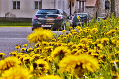 Stvolinky, kraj de Machuv, République Tchèque - 14 avril 2017 : support noir d'Opel Astra H de voiture l'après-midi vert de place Photos stock