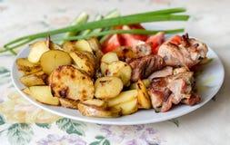 Stwarza ognisko domowe robić grilla mięso z smażącym grula rosjanina stylem Obraz Stock