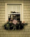 Stycke av Americana Arkivfoto