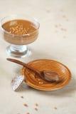 Stycke av chokladkaffe Panna Cotta Arkivbilder