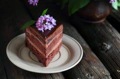 Stycke av chokladkakan som dekoreras med lilan Arkivfoto